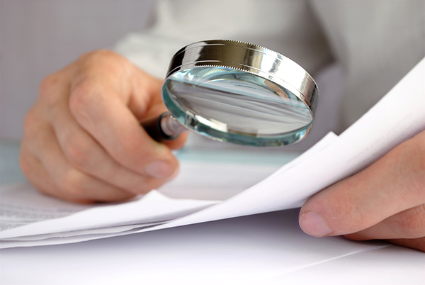 Commerial Lease Audit