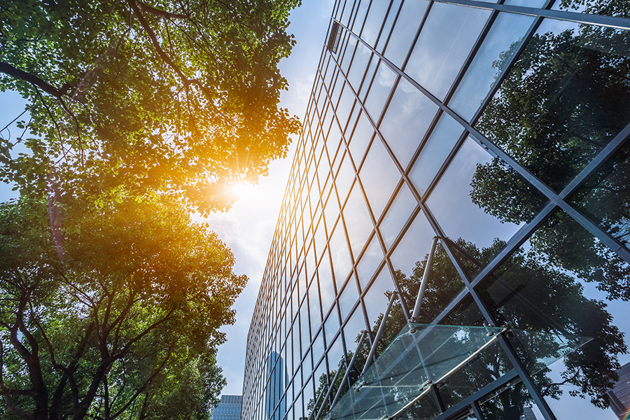 5 Ways to Make a Greener Office Space