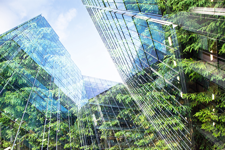 8 Reasons You Should Lease Office Space in a LEED Certified Building