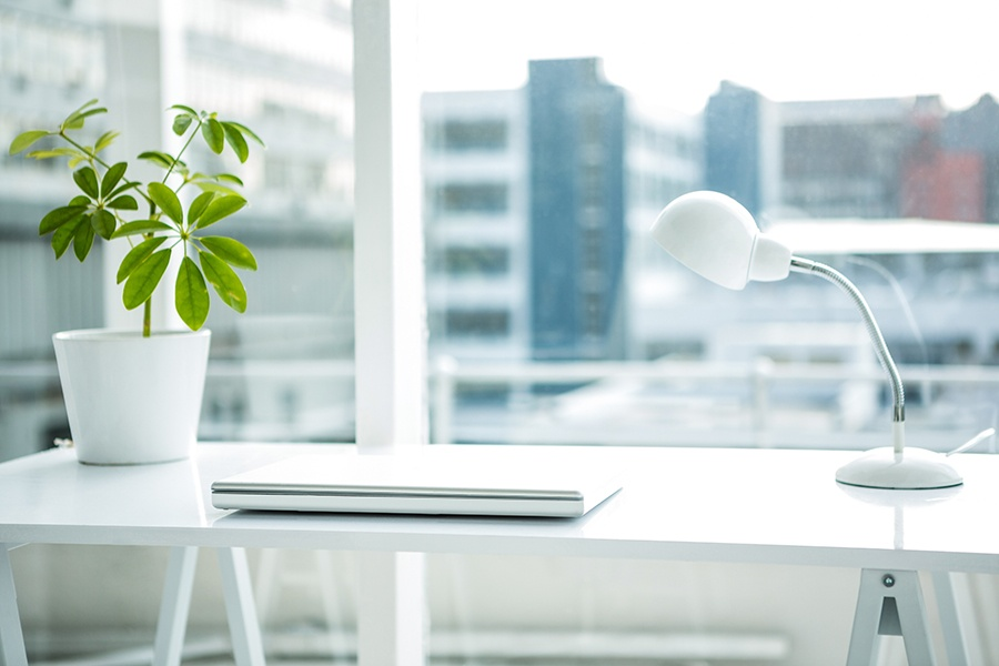 Advantages to a Green Office Space